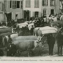 1416043337-Oloron-place-Gambetta